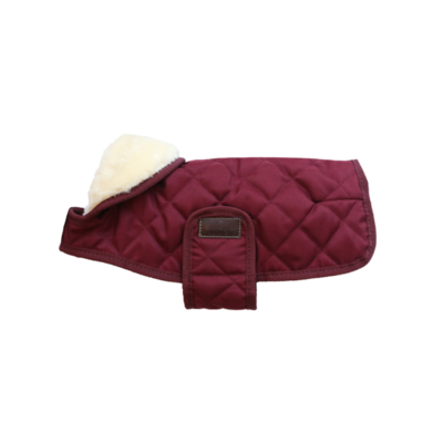 Kentucky This outstanding Waterproof Dog Coat offers every dog a dry, warm rug during the cold, wet winter days.