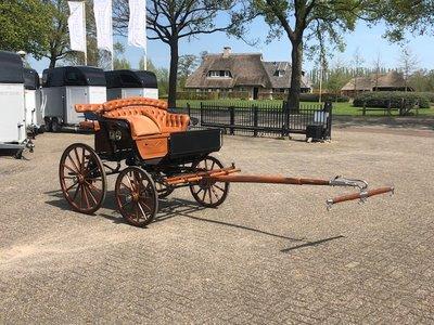 Van den Heuvel pony spider (Nieuwstaat)